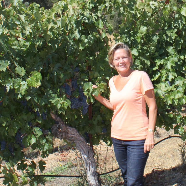 Winemaker's Vineyard Hike and Wine Tasting